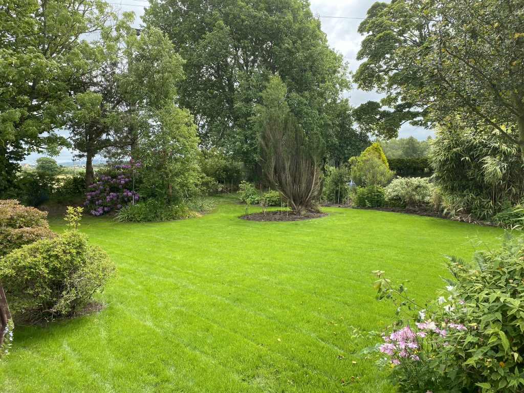 Bill and Betty's garden at Leesrigg Cottage